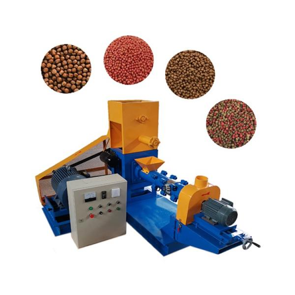 Dry Type Floating Fish Feed Extruder Machine in Nigeria