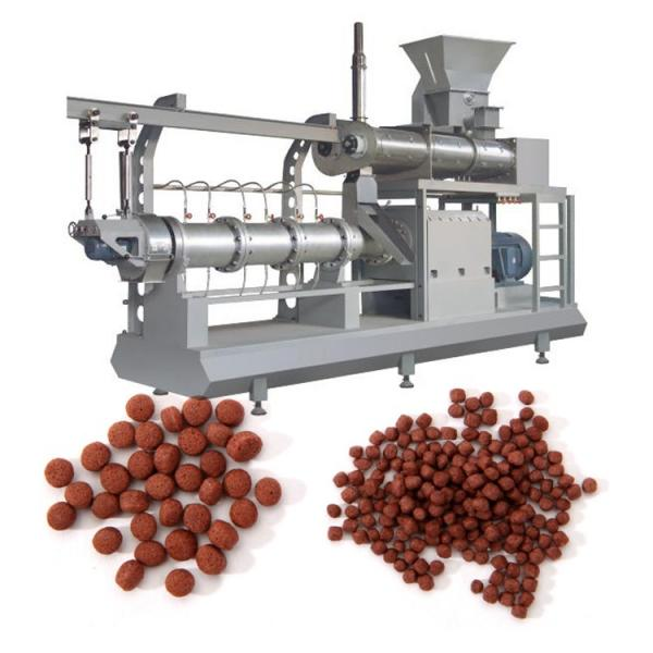 Dry Type Floating Fish Pellet Feed Extruder From China Factory